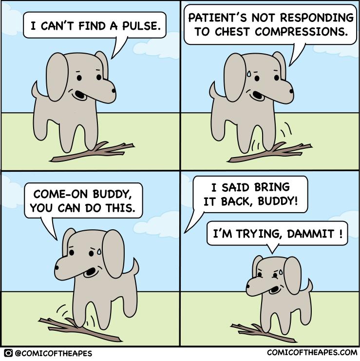 Dog comic about fetching stick