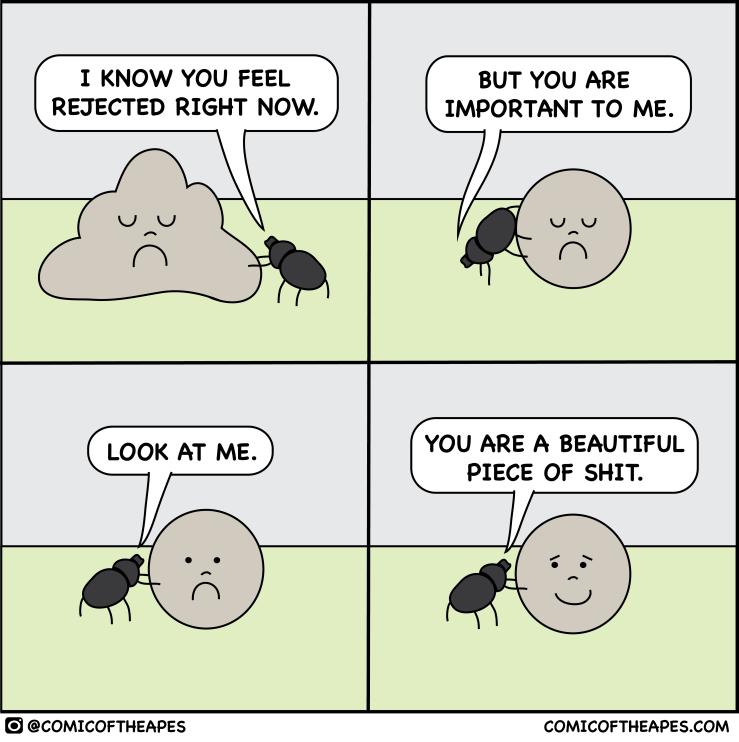 motivational dung beetle